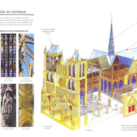 Amiens Cathedral Diagram